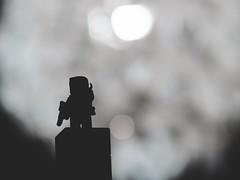 JS051543 (crosathorian) Tags: bobafett starwars lego vintage vivitar13528fd canon fd canonfd blende4