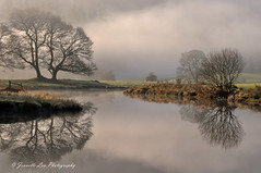 Silent Company (jeanette_lea) Tags: landscape united kingdom river brathay elterwater the lake district cumbria sunrise dawn lowlight fog trees reflections clouds grass water