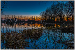 Angler's Dusk! (steve.gombocz) Tags: landscape colour colours color natureisbeautiful out outandabout outdoors landscapephotos landscapephotography landscapephotographs water reflections scenery landscapescene nature lakescene landscapepicture dusk sunset blue nicelandscapes lake tree silhouette nikon nikond810 nikoneurope nikkor nikoncamera nikonfx nikon2401200mmf40 ngc