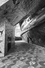 modernisme (Rudy Pilarski) Tags: nikon nikkor d7100 dowtown design 1020 monochrome moderne modern paris france francia bâtiment building immeuble nb bw noiretblanc blackandwhite forme form structure capitale capital urbain urban urbano geometry géométrie géométria géométrique