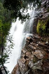 Freguson Falls, Overland Track