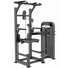 http://www.evostfitness.com/equipment/f-series/dip-chin-assist/7/140 (evostfitness.com) Tags: gym fitness equipment brands india best strength machines machine top manufacturers suppliers chin assist