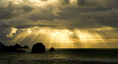 Splendid Sunbeams upon the Ocean (milton sun) Tags: sunbeam ocean rockawaybeach pacifica northerncalifornia dusk seascape bay ngc bayarea wave shore seaside coast westcoast pacificocean landscape outdoor clouds sky water rock mountain rollinghills sea sand beach cliff nature highway1 sunset goldensunset