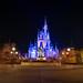 Magic Kingdom - Castle at Night