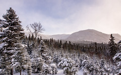 vue d'ensemble (Mccin) Tags: forêt montalbert montagnes neige randonnée raquette