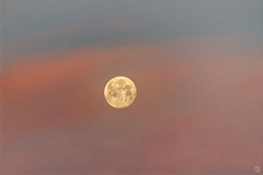 Dawn Moon 2202019 (splinx1) Tags: moon luna fullmoon dawnmoon hdr pentaxart hss