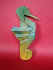 Seahorse / Cavalluccio Marino - Beth Johnson. (Stefano Borroni (Stia)) Tags: origami origamipaper origamicdo origamilove origamiart piegarelacarta arte folding foldingpaper papiroflexia carta animali natura wwf sea mare savesea cavalluccio hippocampus pesci ippocampo johnson bethjohnson cdoitalia art