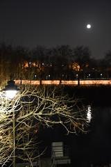 Ile-Saint-Denis: February 20, 2019, full moon on the Seine (Christophe Rose) Tags: isd lune moon christopherose christophe rosé ile saint denis seine river fleuve ciel sky reflet nikon d5600 arbre tree 93