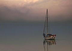 Theme : Sail Boats - Mist (Acyro) Tags: acyro portugal tejo sail boats waterscape rio river reflexos reflexions nevoeiro fog mist aoi elitegalleryaoi bestcapturesaoi