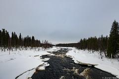 Z19_1246 LT (Zoran Babich) Tags: lapland lappi finland suomi winter snow landscape vikäjärvi