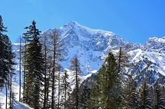 Ortles (Ortler) in veste invernale (giorgiorodano46) Tags: marzo2019 march 2019 guirgiorodano solda sulden altoadige sudtirolo italy inverno winter hiver alpi alpes alps alpen