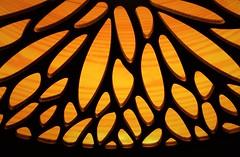 Fossil Lamp Shade..x (Lisa@Lethen) Tags: macromonday macromondays hmm mm lookup fossil lamp shade wooden wood light shadows macro