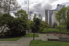 April in Seattle 3527 (All h2o) Tags: seattle washington city park cityscape pacific northwest buildings sky clouds landscape spring