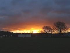 South Hams sunrise (Phil Gayton) Tags: grass tree building sky cloud sun sunrise silhouette borough park totnes southhams devon uk