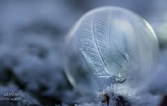 Noch eine O (LENS.ART Photographie) Tags: gefroren winter seifenblase nikon dof macro soapbubble frozen d7200 kalt licht light art kunst rund kristall