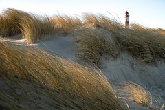 am Ellenbogen bei List (andreas.zachmann) Tags: deu listaufsylt sand dünen küste himmel leuchtturm gebäude dünengras strand list schleswigholstein deutschland