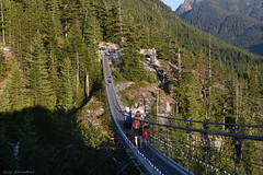 Up In The Mountains - 12 (Average Photographer 1992) Tags: landscapephotography landscapes landscape nikon nikonphotography nikonphotographer nikonuser nikonphoto nikond7200 nature naturephotography mountain mountains squamish seatoskygondola britishcolumbia britishcolumbiacanada canada tree trees august august2018 earth mountainrange mountainranges mountainscape scapes summer summer2018 vacation photography thechief skypilot