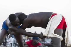 Festival OGOBAGNA_3 (Tiécoura) Tags: dogon mali festival masques lutte bamako petit goro afrique ben zabo