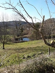 Combe Jean Monceau s/Dordogne (19)