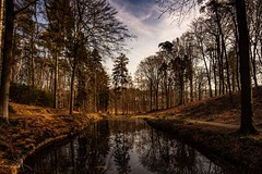 MMF-20190217120844-2 (MarcelMengerFotografie) Tags: nikond800e nikon veluwe posbank tokina landschap nature trees landscape