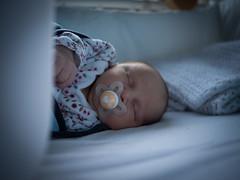 Élise (Dahrth) Tags: gf1 lumix20mm microquatretiers bébé baby fille girl portrait bokeh