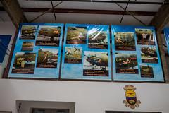 B-17 Nose Art (Serendigity) Tags: 390thmemorialmuseum arizona b17 boeing noseart pimaairspacemuseum tucson usa usaaf unitedstates wwii aircraft aviation bomber hangar indoors museum unitedstatesofamerica