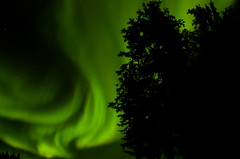 March Madness-118 (juan_guthrie) Tags: northernlights yellowknife nwt aurora