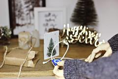 What a gift! (IamRina_) Tags: bjd doll abjd bjdboy christmas