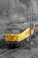 Colas Rail Freight 56096 (Mike McNiven) Tags: colas railfreight rail freight engineering oldtrafford trafford manchester manchesterunited united footballclub mufc halt cheshire pop colourpop orange yellow splash coloursplash