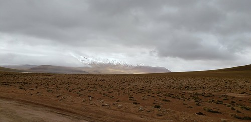 The Lipez Desert at 5,400m. (17,716.50 ft.), Bolivian Highlands (Altiplanos Boliviano), Potosí, Bolivia.