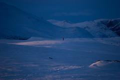 Ensom skiløper Des 2019 (Sven LP) Tags: snow skiing mountain low light blue clouds