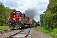 WNYP 630 South. McKean County, PA (bobchesarek) Tags: wnyp trains locomotive alco railroad shortline