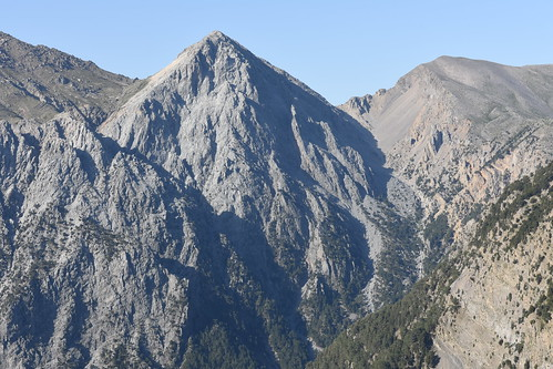 Mt Gingilos