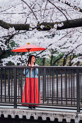 2019_03_30_IMCJP_Sakura_Instameet_033_HD (Nigal Raymond) Tags: imcjpsakura imcjp igersjp instameet お花見 桜 石神井川 板橋 東京 日本 sakura hanami cherryblossom shakujigawa itabashi tokyo japan sonyalpha alphacollective bealpha sonyphotography sonya7r3 a7r3 sonyimages sonyportraits nigalraymond ナイジャルレイモンド wwwnigalraymondcom
