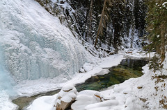 Ice Flowing Into Creek (Bracus Triticum) Tags: ice flowing into creek アルバータ州 alberta canada カナダ 12月 december winter 2018 平成30年 じゅうにがつ 十二月 jūnigatsu 師走 shiwasu priestsrun