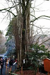 SDQ_1090 (koyaman3422) Tags: 京都 kyoto sigma sdquattro 1770mm 貴船神社
