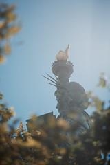 La dame au matin (jerome83210) Tags: usa new or statue liberté portrait feuillage bokeh lueur ciel flare nikon nicher bleue blue