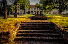 Saturday for Stairs (Jims_photos) Tags: commodoreperryestate saintmarysacademy texas trees unitedstates outdoor outside adobelightroom adobephotoshop austintexas austintx austin shadows sunnyday sunrise daytime jimallen jimsphotos jimsphotoswimberleytexas lightroom nopeople memories