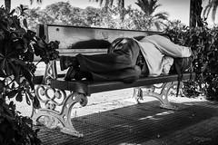 El Cansancio. (The Fatigue) (Capuchinox) Tags: