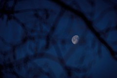 White Night (NathalieSt) Tags: europe france hérault lagrandemotte languedocroussillon occitanie leverdesoleil nature nikon nikond750 nikonpassion nikonphotography sunrise