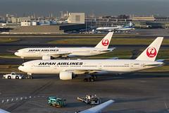 Japan Airlines | JA8985 & JA008D (TommyYeung) Tags: japanairlines jal 日本航空 にほんこうくう 日航 にっこう ジャル japanair jl 日本の翼 oneworld boeing boeingcommercialairplanes 777 777200 b777 b772 boeing777 tripleseven boeing777246 boeing777289 widebodyjetairliner widebodyjet widebody plane planespotting planephoto planes airplane aeroplane aircraft airliner air airline airliners airlines airtransport airside airframe aviation fly flymachine jet jetairliner twinjet passengerjet commercialjet transport transportphotography transportspotting transportation japantransport taxiing taxiway hnd 東京 東京国際空港 羽田空港 羽田 rjtt haneda hanedaairport tokyo airport prattwhitneypw4000 pw4000 prattwhitney canonphotography canon canoneos5d4 ja8985 ja008d