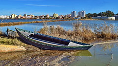 Row the boat ashore (gerard eder) Tags: world travel reise viajes europa europe españa spain spanien valencia elperelló perelló landscape landschaft lake lago lagodelaalbufera landwirtschaft lamarjal boats boote barcas wasser water natur nature naturaleza outdoor paisajes panorama reed