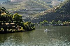 Douro34 (Evajavel) Tags: douro valle