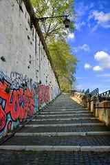 Fino alla meta, faticosamente (Maurizio Belisario) Tags: roma rome lungotevere scalinata flightofsteps murale alberi trees gradini steps cielo sky nikond5300 nikkor1685