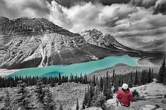 Peyto Lake (Sean X. Liu) Tags: peytolake banffnationalpark icefieldparkway alberta rockymountains canadianrockies canada blackandwhite selectivecolor