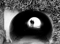 Tunnel of Love (creepingvinesimages) Tags: hmm monochrome blackandwhite bw tunnel capeperpetua capeperpetuanationalpark nikon d7000 pse14 topaz