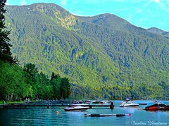 Those quiet moments on the lake. Cultus lake, Canada (Veselina Dimitrova) Tags: trees boat water summer mountain nationalgeographic naturelovers photo nature cultus lake clickthecamera clickcamera canada british columbia beautiful bestoftheday photooftheday picoftheday sony
