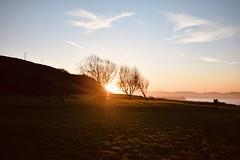 As the sun goes down. #sun #sunset #Gijón #winter (carla19394) Tags: asturias gijón atardecer cielo puestadesol sol sky sunset sun