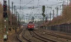 30_2019_02_08_Gelsenkirchen_Almastr_6151_030_Rpool_mit_Bleche_Tragwagen ➡️ Wanne-Eickel (ruhrpott.sprinter) Tags: ruhrpott sprinter deutschland germany allmangne nrw ruhrgebiet gelsenkirchen lokomotive locomotives eisenbahn railroad rail zug train reisezug passenger güter cargo freight fret schalkerverein almastrasse abrn brll ctd db de erb rpool 403 0275 0422 0648 1223 1232 1428 3294 6101 6111 6146 6185 6193 ec9 re2 re3 rb46 s2 siemens vectron outdoor logo natur graffiti