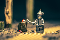 This was a mistake. (3rd-Rate Photography) Tags: tinman tinwoodman thewizardofoz lego minifig minifigure toy oz lfrankbaum valentinesday heart love cute toyphotography canon macro 100mm jacksonville florida earlware 3rdratephotography yellowbrickroad